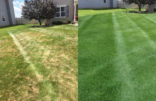 Home And Garden Lawn Care Services Joliet Plainfield Il