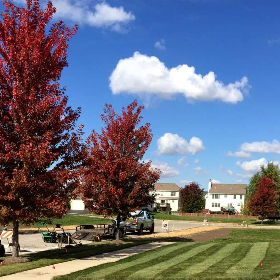 Aurora, Illinois lawn renovation project