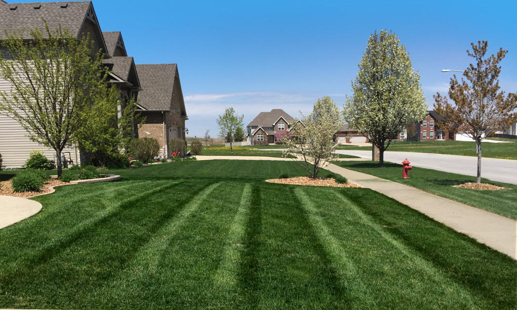 Plainfield Lawn Care