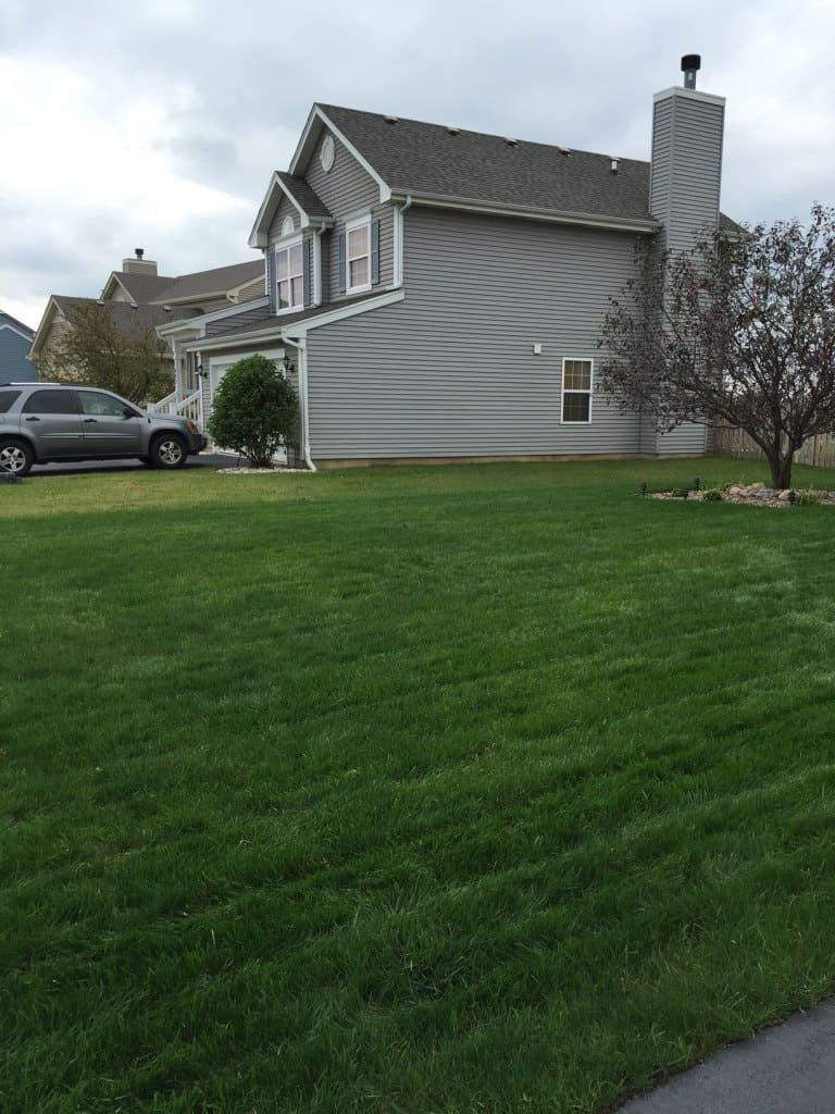 After lawn renovation in Minooka, IL