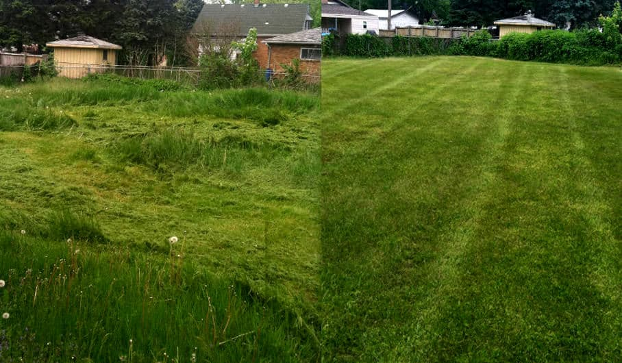 Mowing before and after