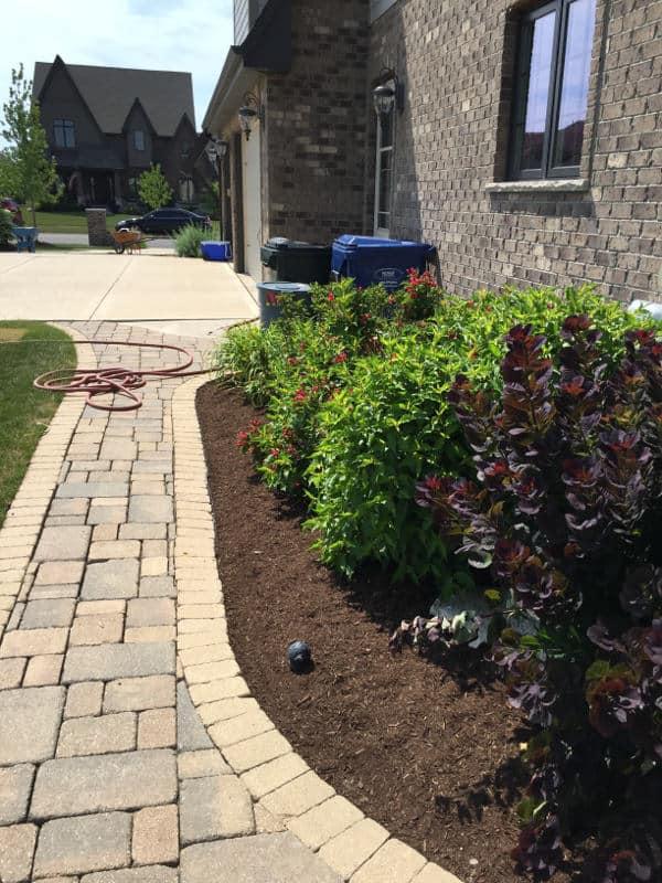 Mulch on flower beds