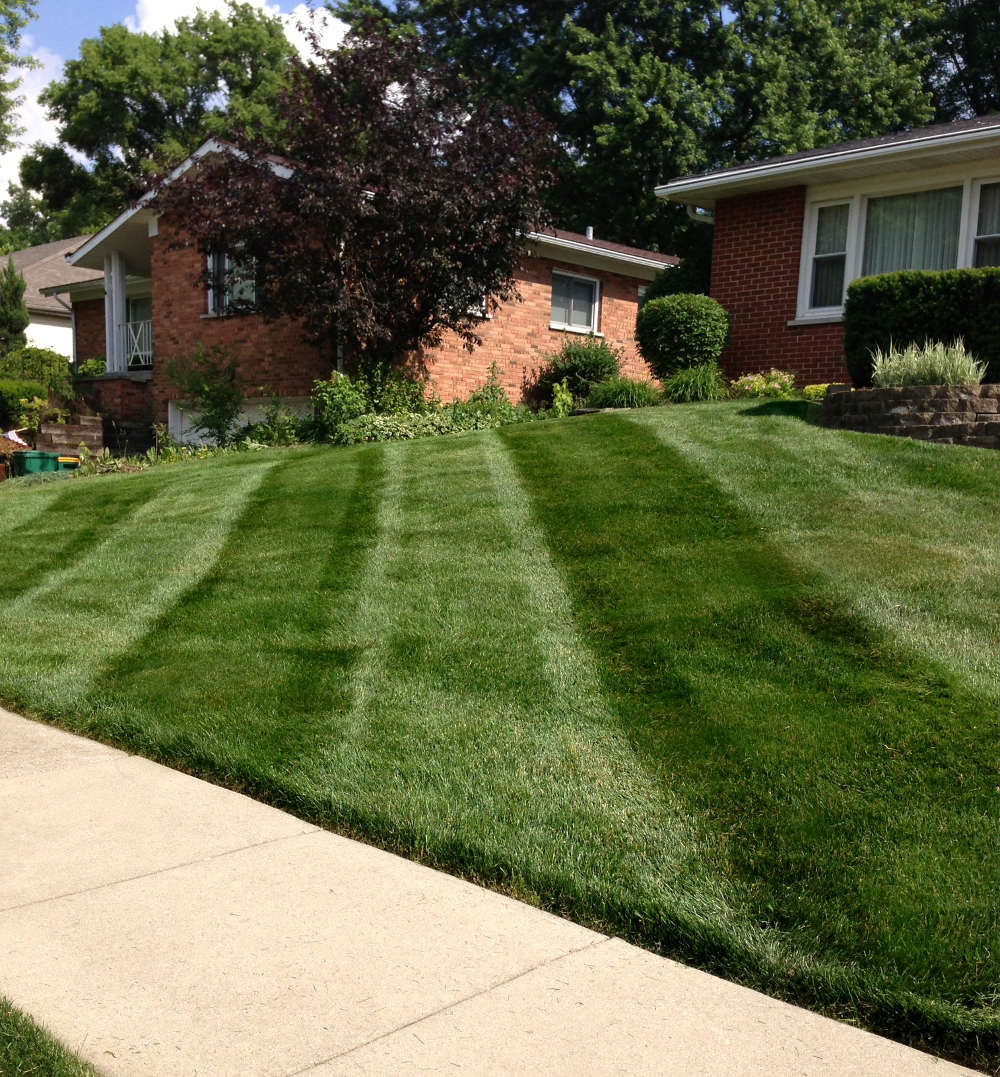 Lemont lawn mowing