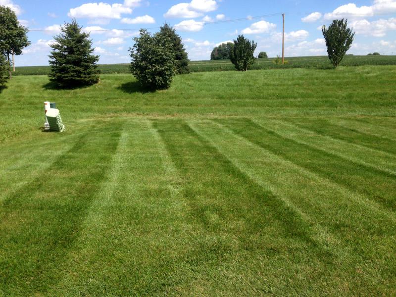 Backyard mowing