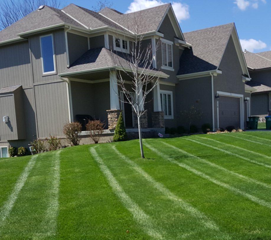 Romeoville lawn care services