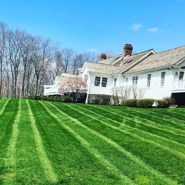 Residential mowing in burr ridge IL